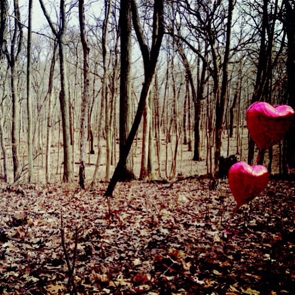 Globos bosque. 2011.  iPhone 4S
